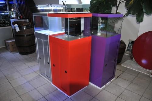 Achat aquarium eau douce for Achat aquarium eau douce